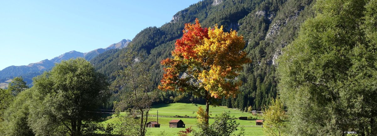 Tyrol tl - my holidays in Tyrol in the heart of the Alps